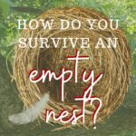how-do-you-survive-an-empty-nest